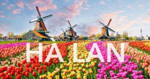 HÀ LAN – vườn hoa Tulíp và đi dạo phố Amsterdam